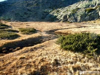 Peña Citores-Cumbres y Lagunas Peñalara; campos de lavanda molina de aragon turismo blog senderism